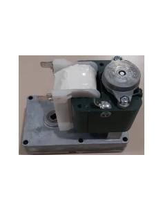 Motor Kenta 2 rpm