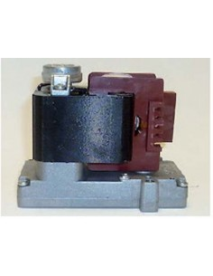 Motor Kenta 5 rpm